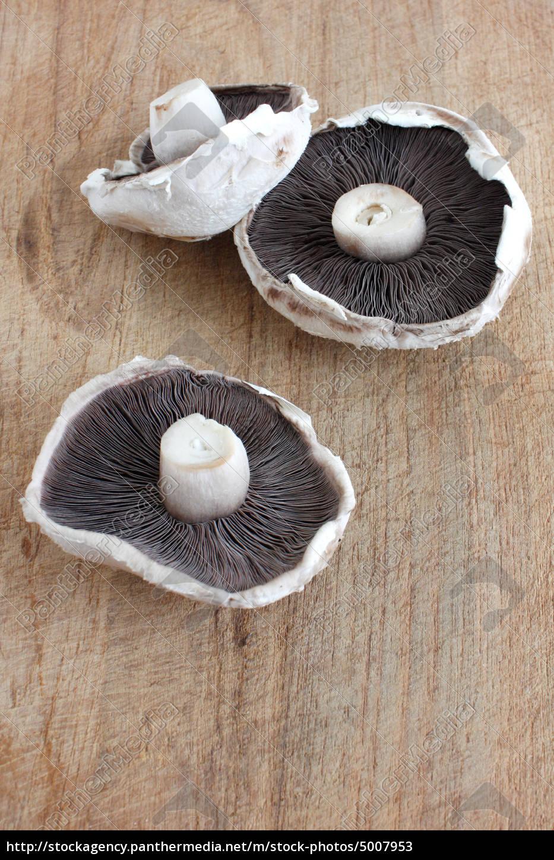 Stock Photo 5007953 - Mushroom
