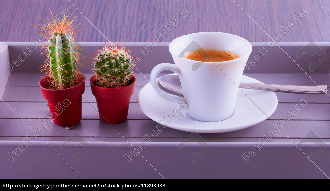 coffee, and, cactus - 11893083