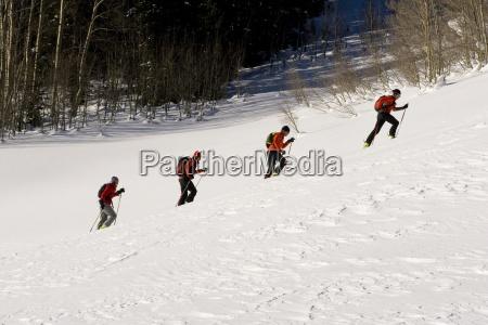 four skiers alpine touring in colorado