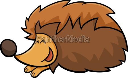 hedgehog animal cartoon illustration