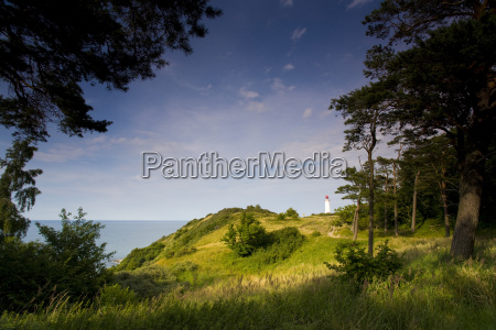 hiddensee in the first light of