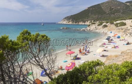 mediterranean vegetation frames the beach and