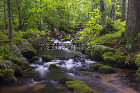 mountain stream after rain at kleine