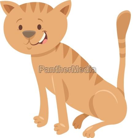 domestic cat cartoon animal character