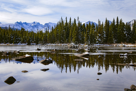 scenic view of frozen lake by