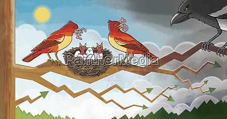 birds feeding chicks with money protecting