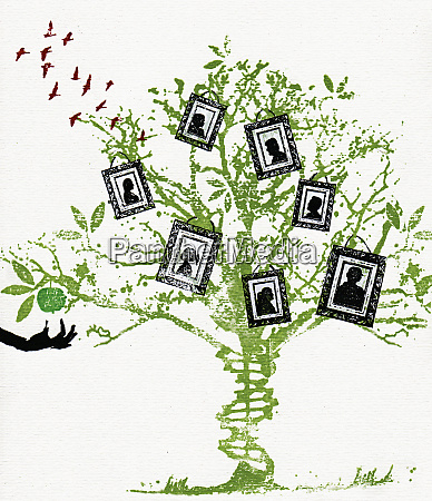 pictures on family tree