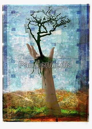 hand holding tree above ground