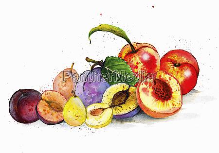 still life variety of fruits