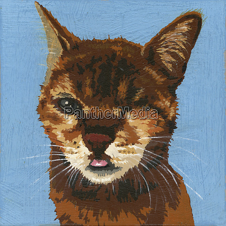 portrait of cat with blind eye