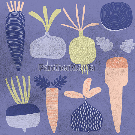 collection of root vegetables
