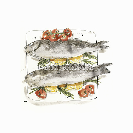baked sea bass fish with tomatoes