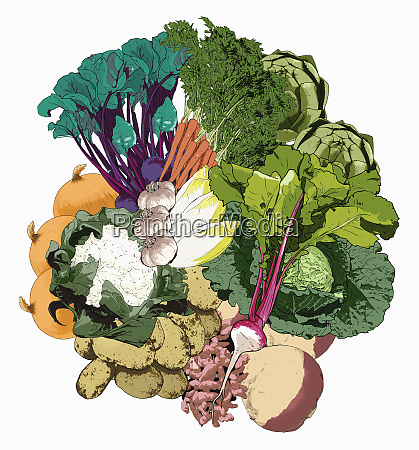 lots of different fresh vegetables