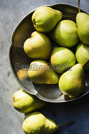 still life of pears in metal